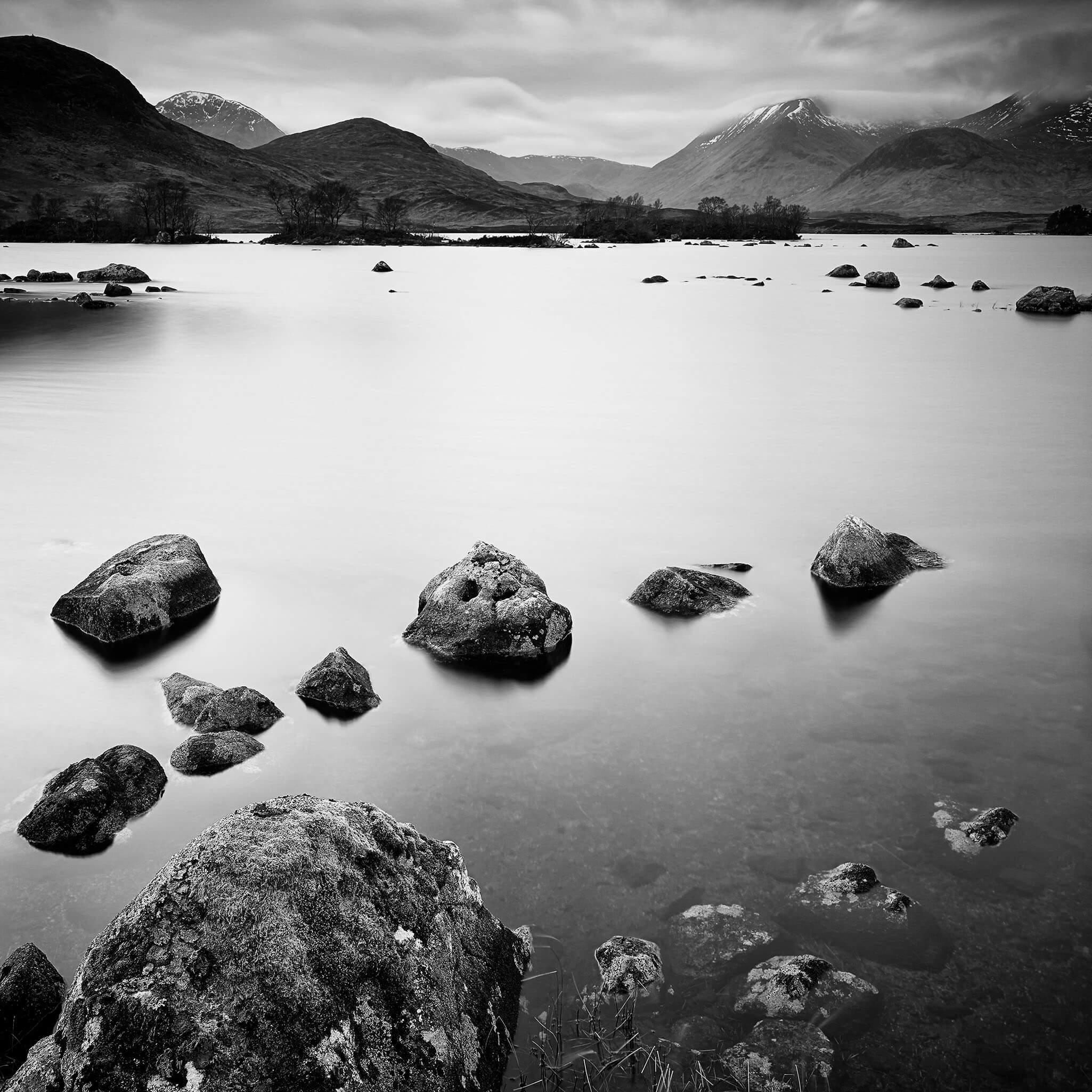 Gosling Black & White Landscape