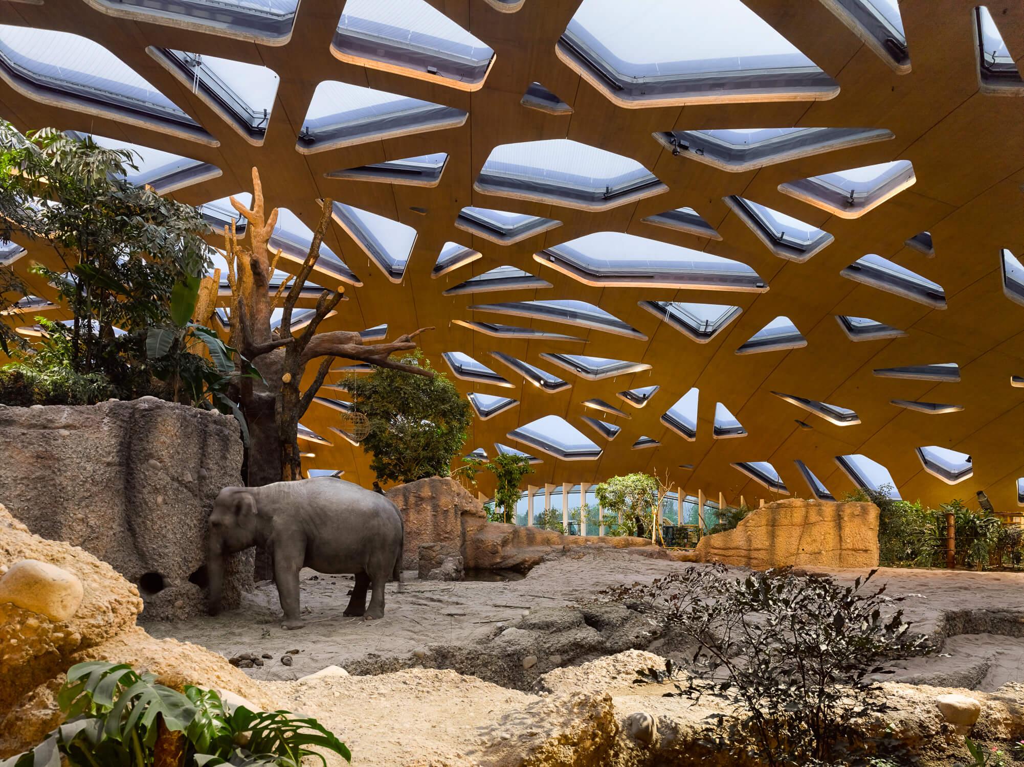 Gempeler Elefantenhaus ZOO Zürich