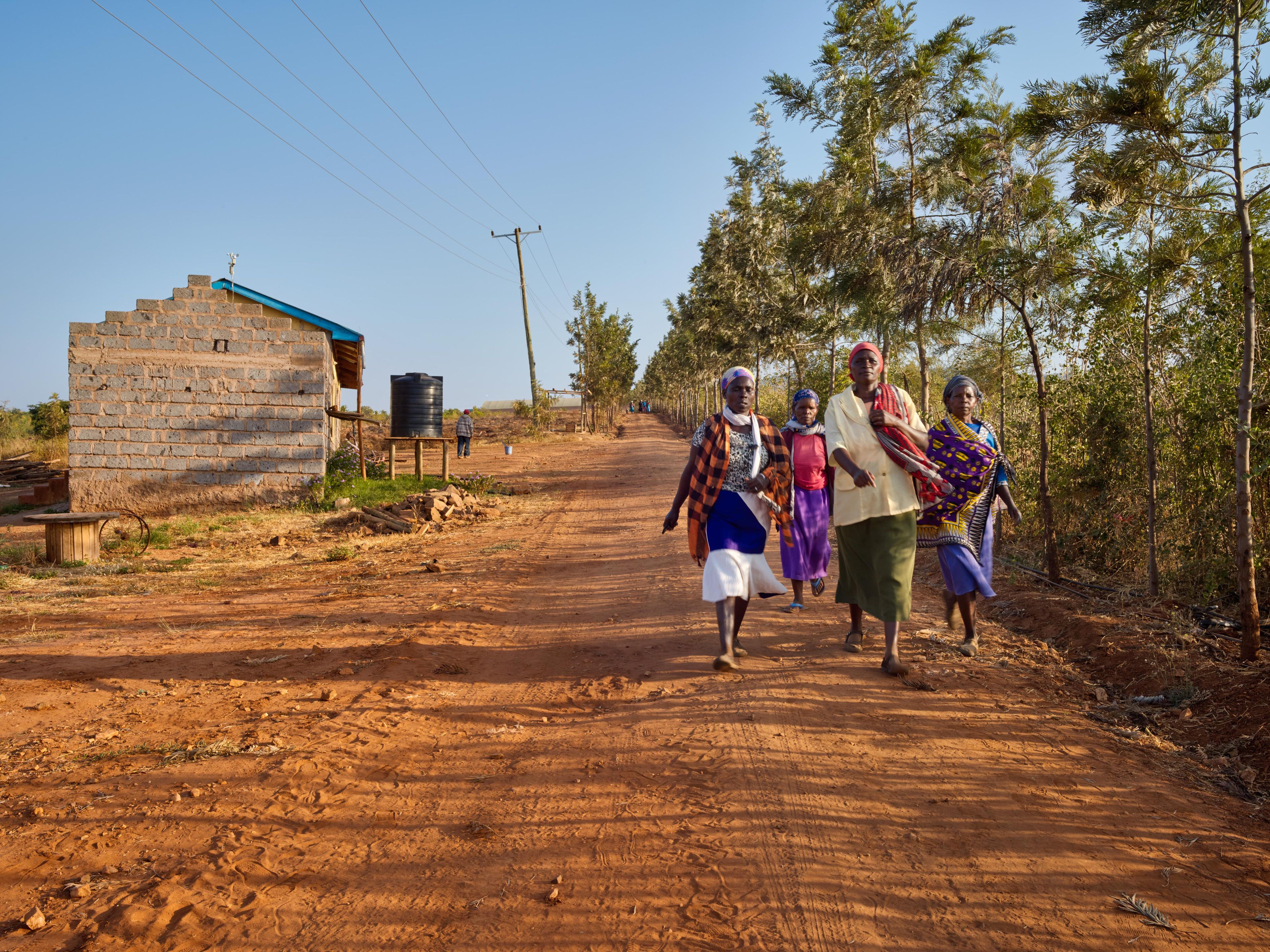 Sies Partners with Nature - Africa