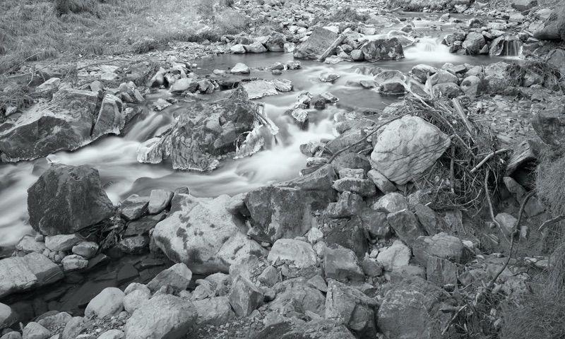 Suter Landscape