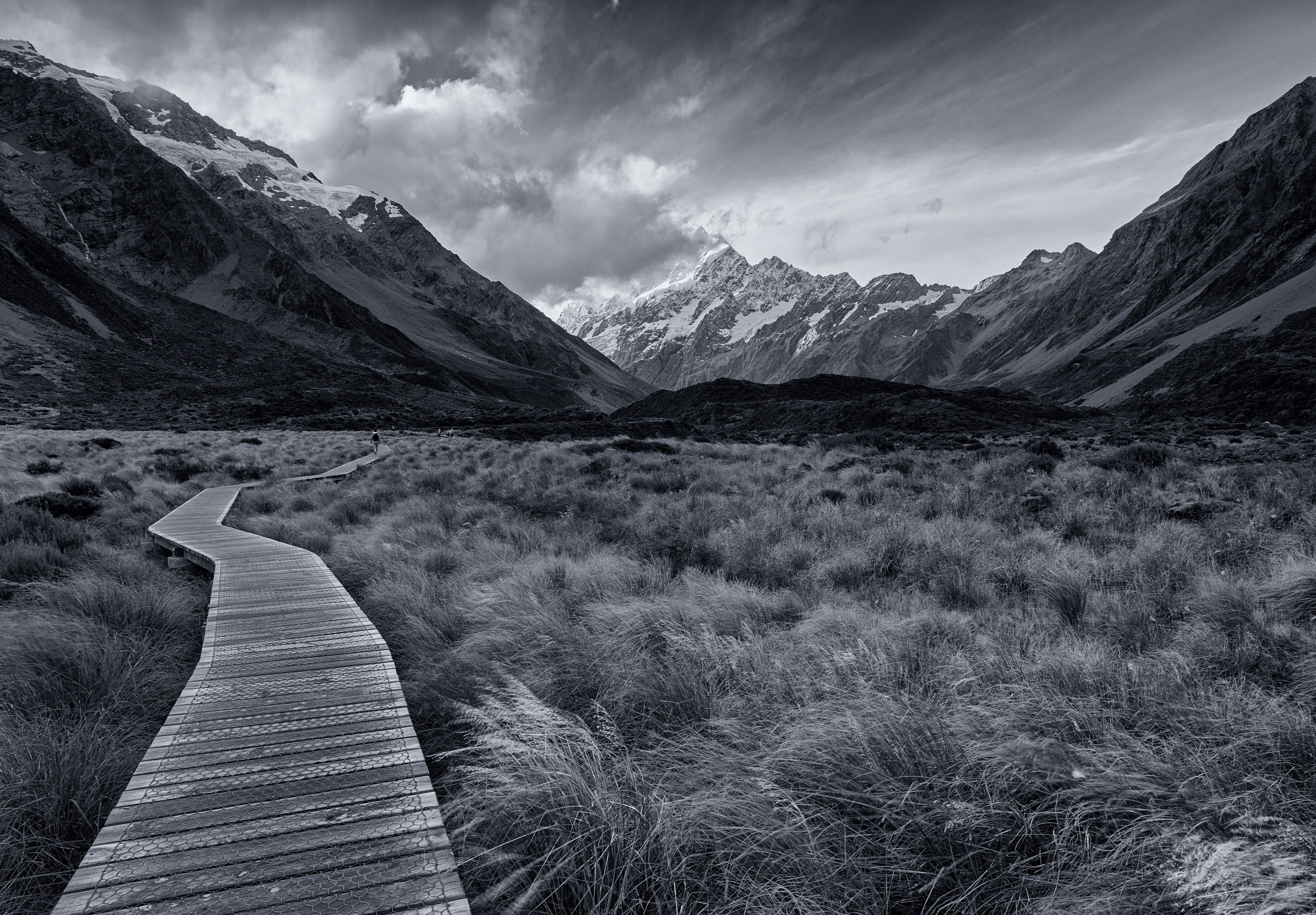 Yu New Zealand