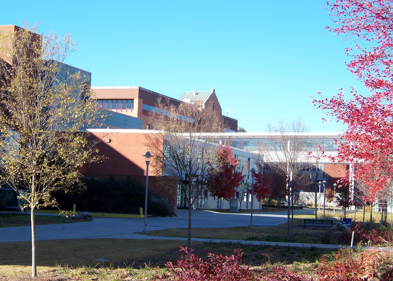 Georgia Institute of Technology (Georgia Tech)