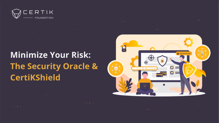 Minimize Your Risk: The Security Oracle & CertiKShield