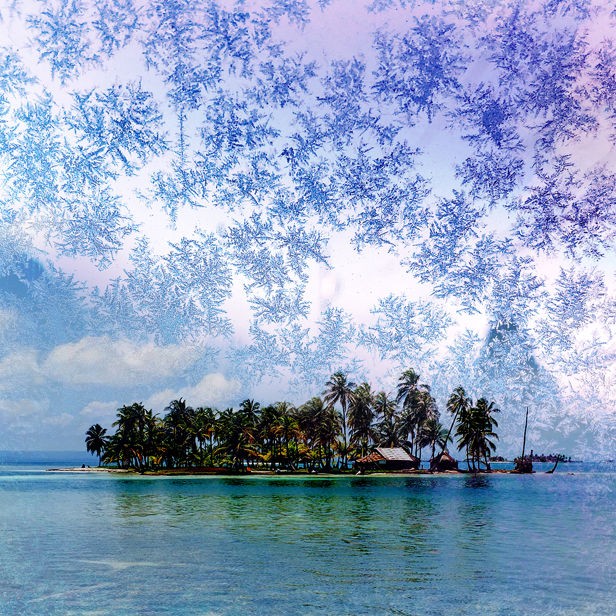 Snowflakes, snow, tropical island with trees and ocean