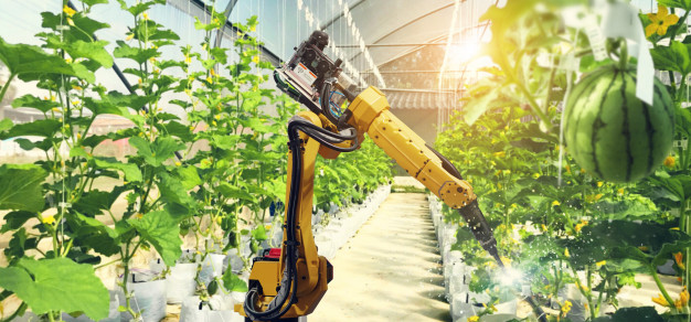 a robot pollinating fruits and vegetables