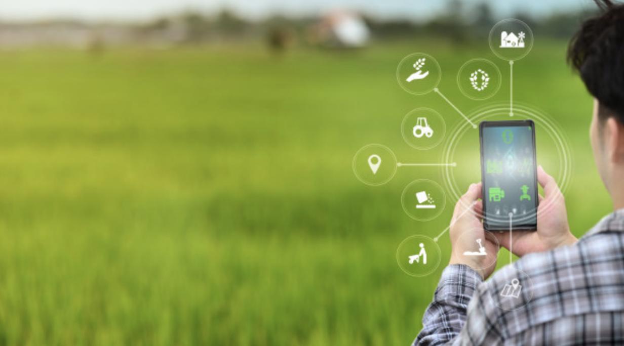 farmer using mobile phone for agritech