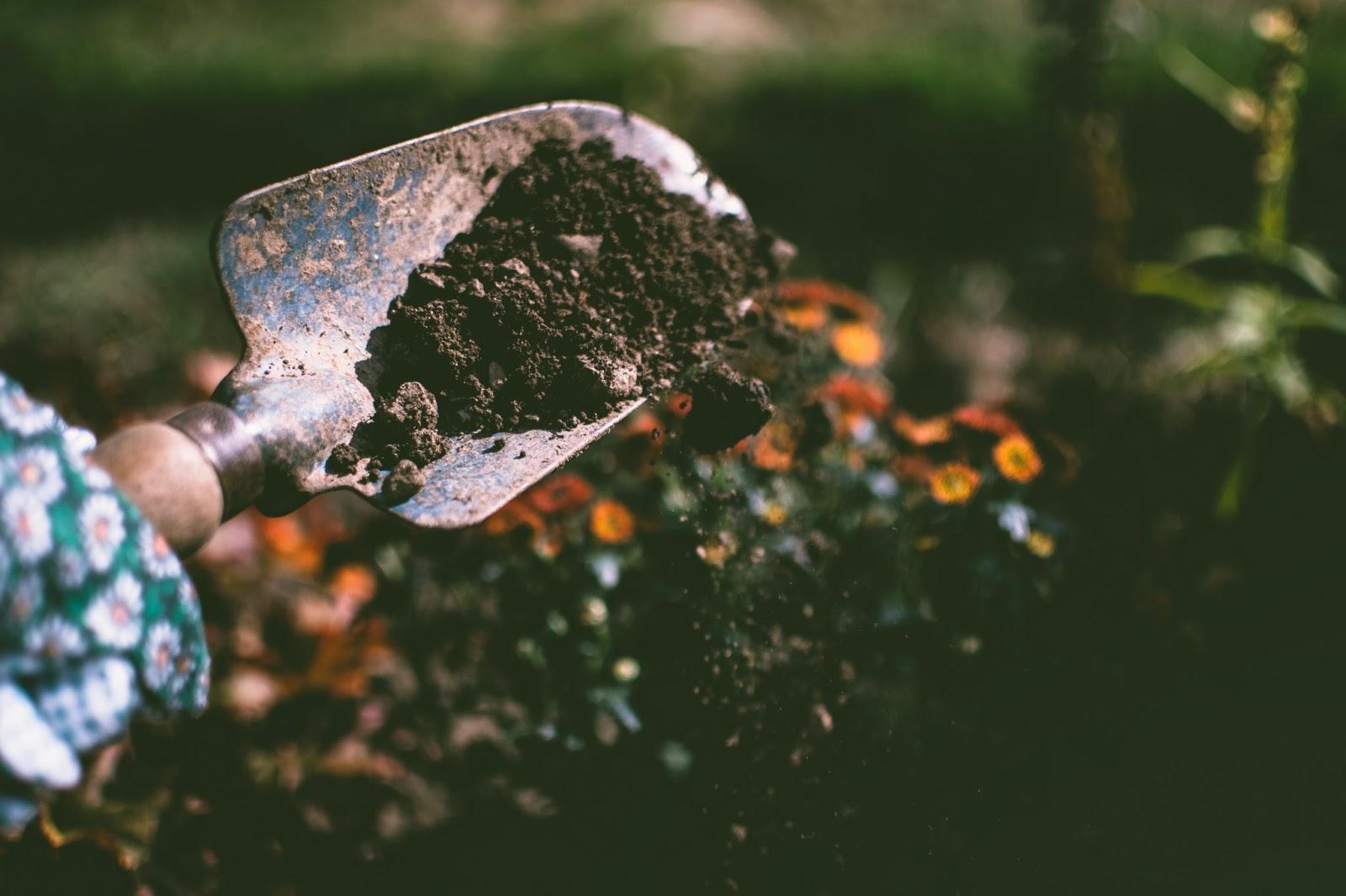 shovel placing soil on field