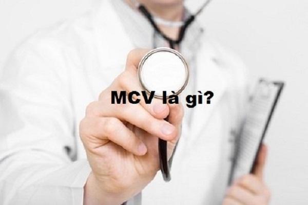 MCV là chỉ số phản ánh thể tích trung bình của hồng cầu