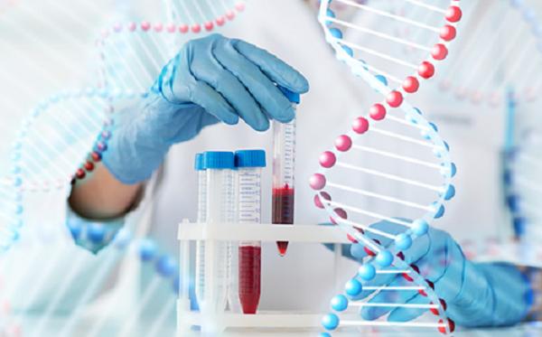 Xét nghiệm ADN là các xác định chính xác nhất về thai đôi cùng trứng hay khác trứng.