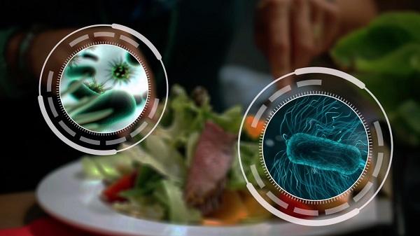 Vi khuẩn, virus, ký sinh trùng, độc tố vi nấm và các hóa chất là những tác nhân gây ngộ độc thực phẩm
