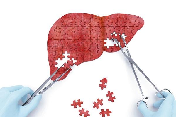 Ở giai còn bù, gan vẫn có khả năng phục hồi