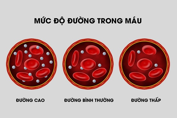 Chỉ số đường huyết