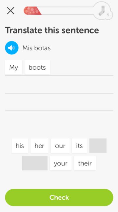 Duolingo UX design case study