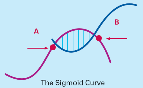 Maturity Stage in Product Life Cycle