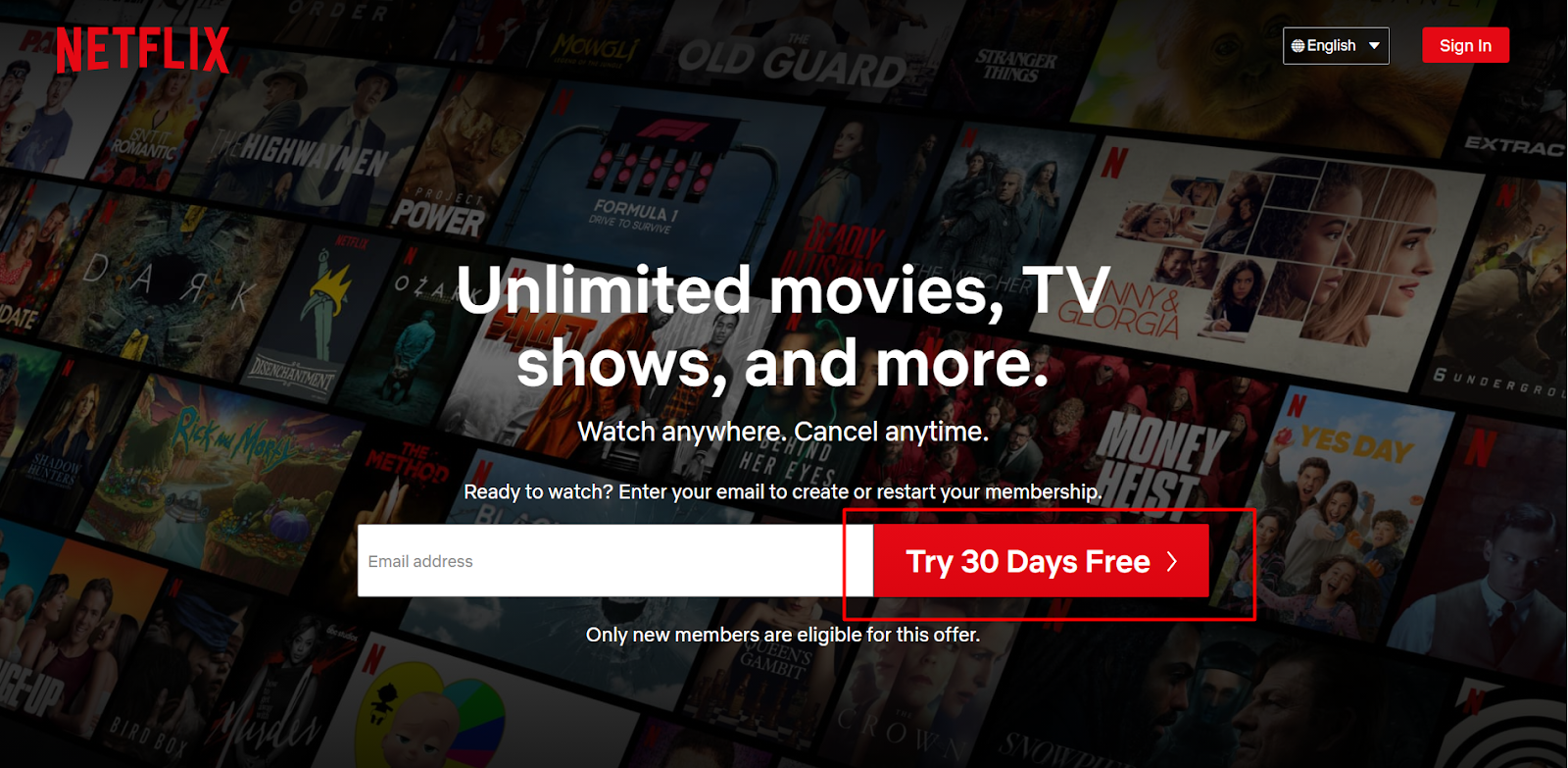 simple sin-up form Netflix example