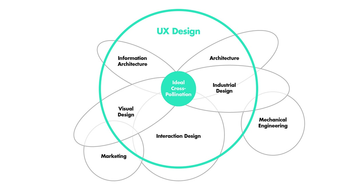 Ideal cross-pollination: UX design with other disciplines