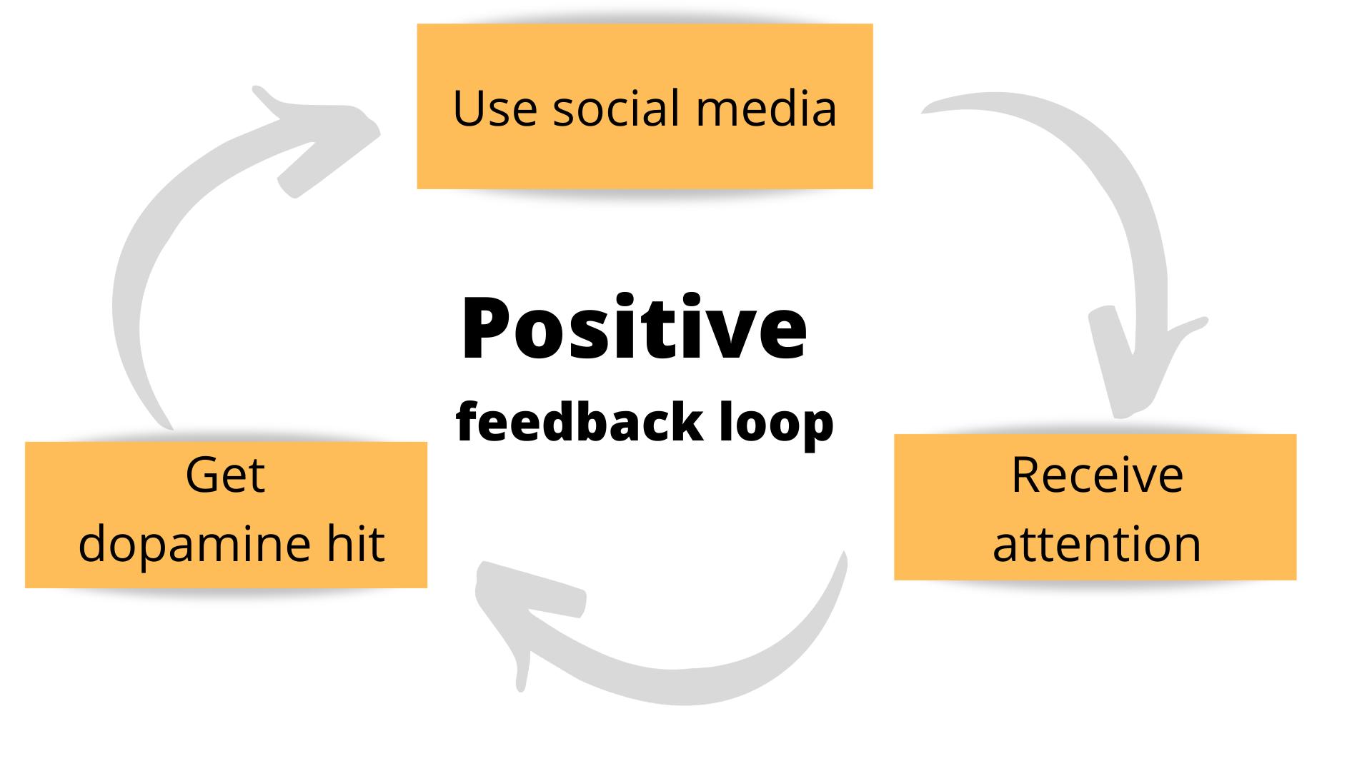social media positive feedback loop diagram