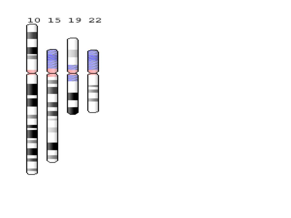 DNA Results Pharmaogenes