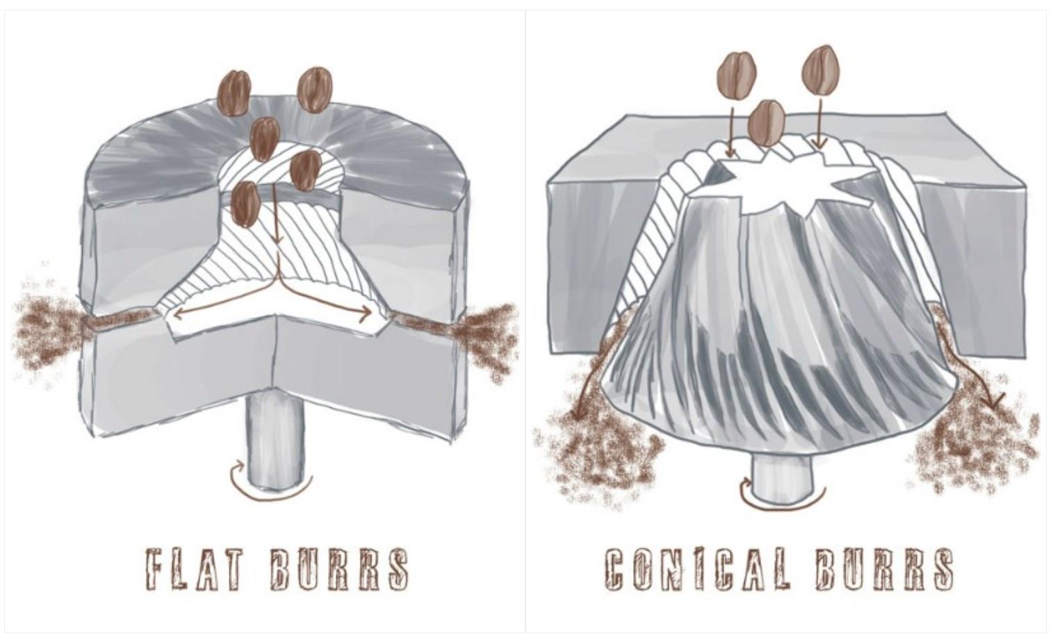 flat vs conical burrs