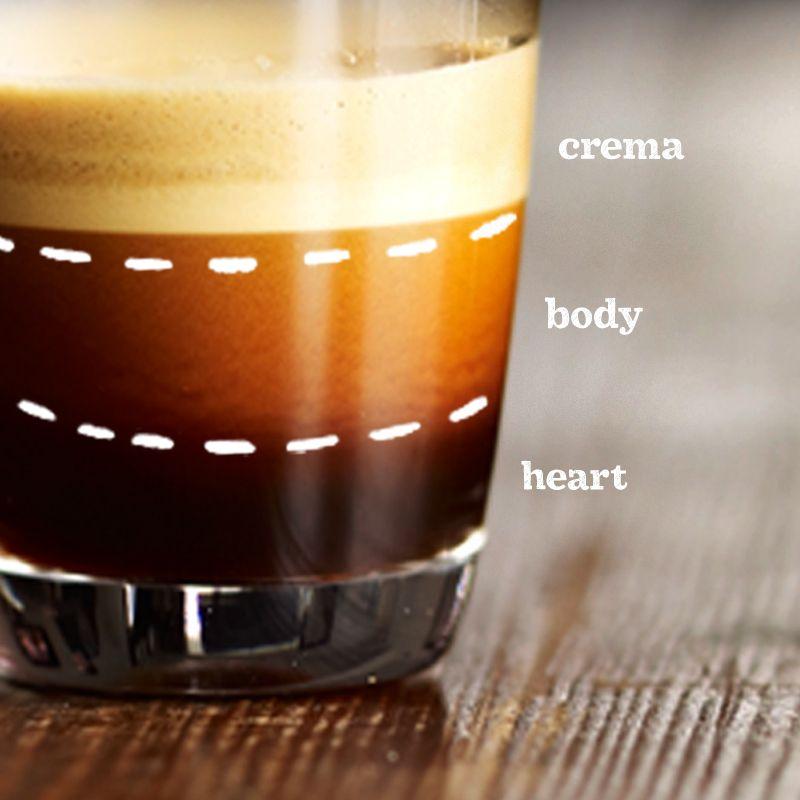 anatomy of an espresso shot
