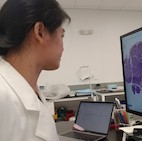 Pathologist using Morphle Automated Microscope Scanner
