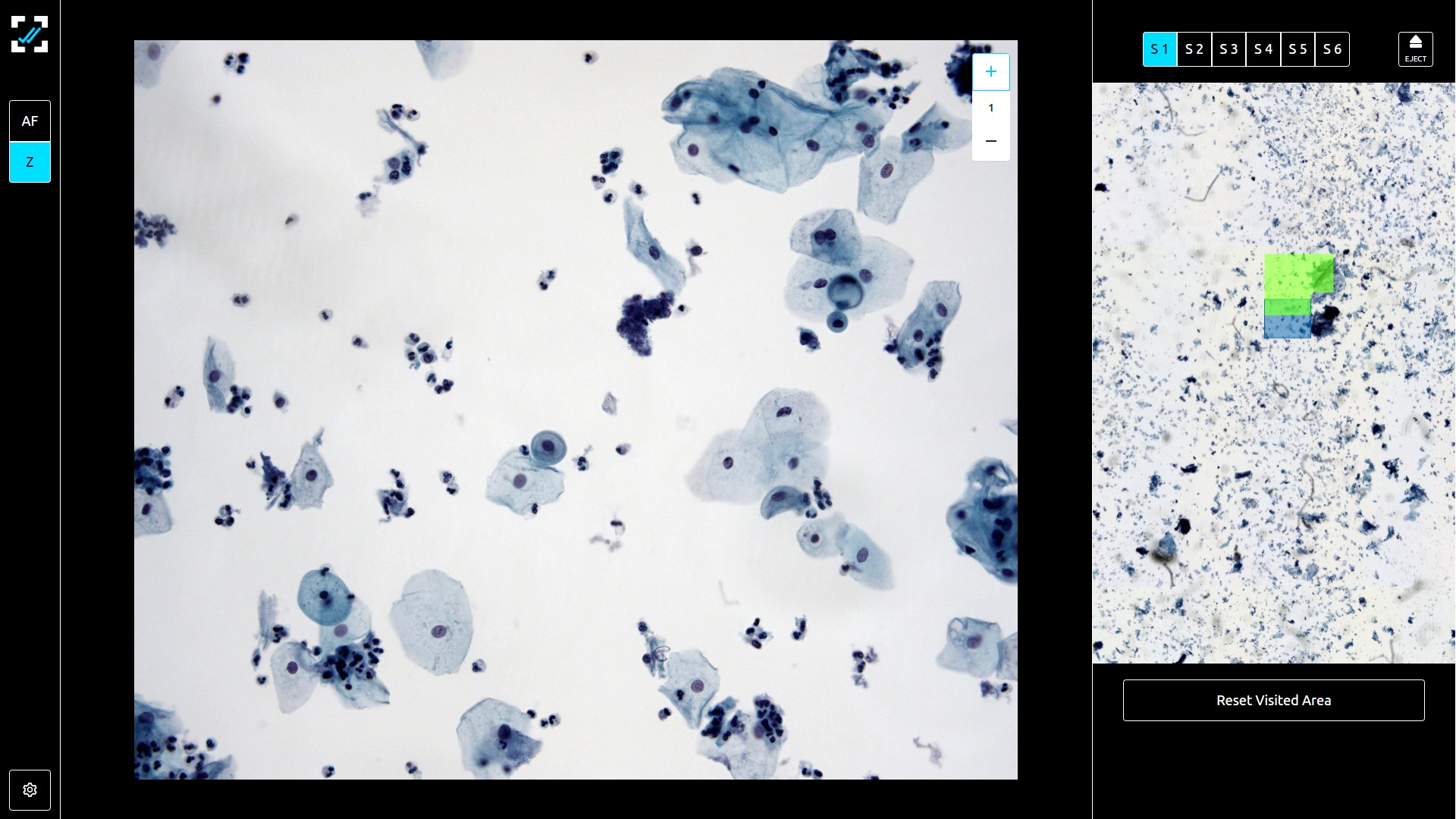 Live Microscopy Mode for Rapid on-site evaluation