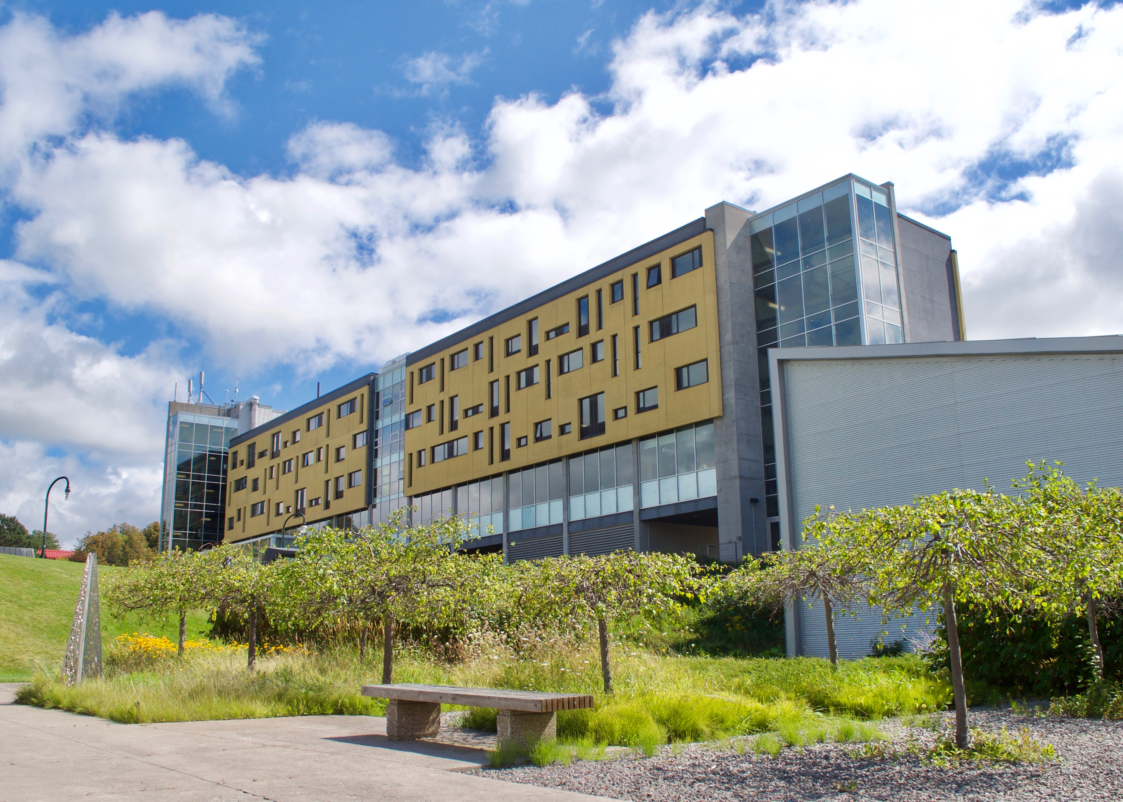 Peter Gzowski College: Future Forward