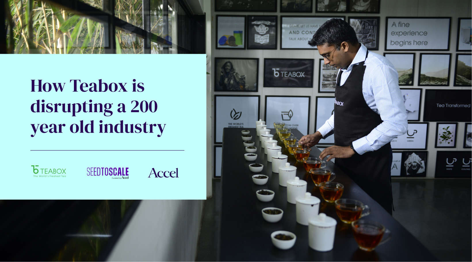How Teabox is disrupting a 200 year old industry