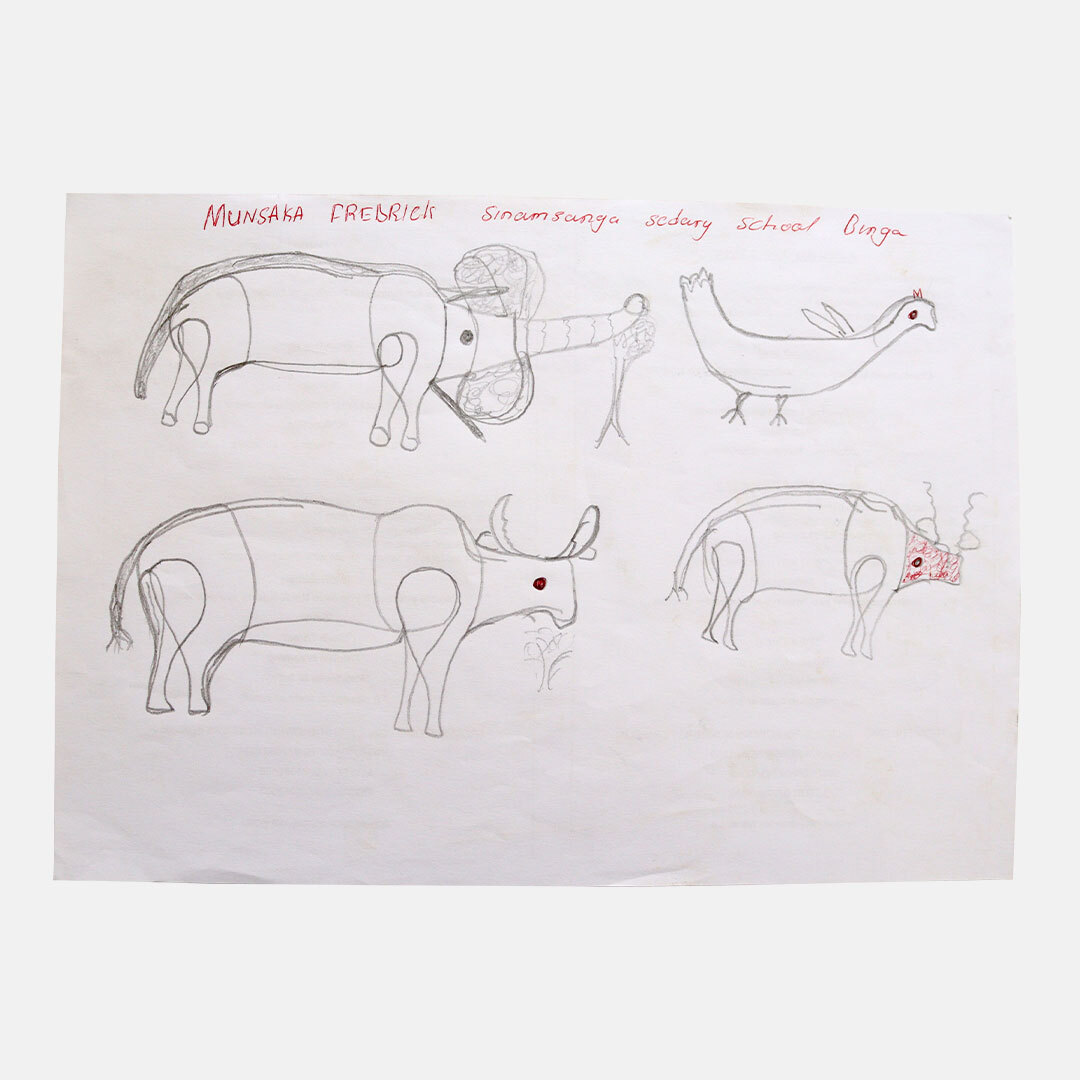 Drawings by local school children