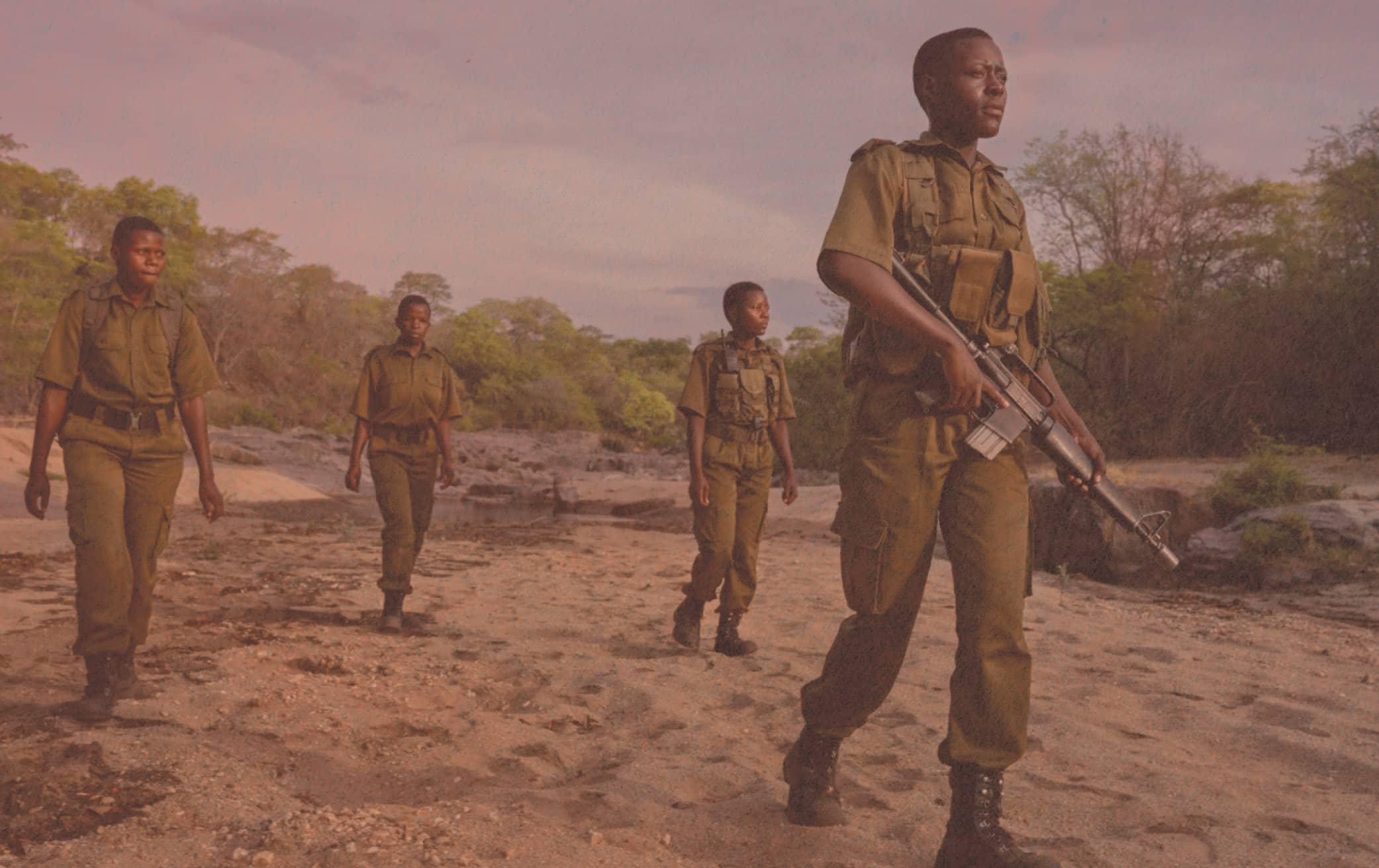 Ranger-led Safari Tour