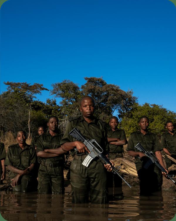 Akashinga Rangers Force