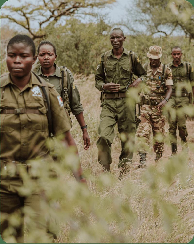 Lead Rangers Patrolling