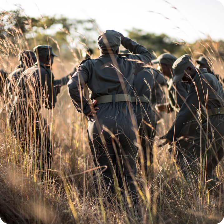 Rangers in the field