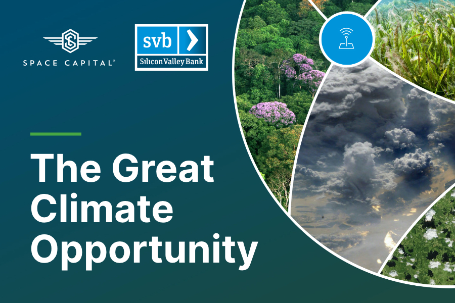 The Great Climate Opportunity