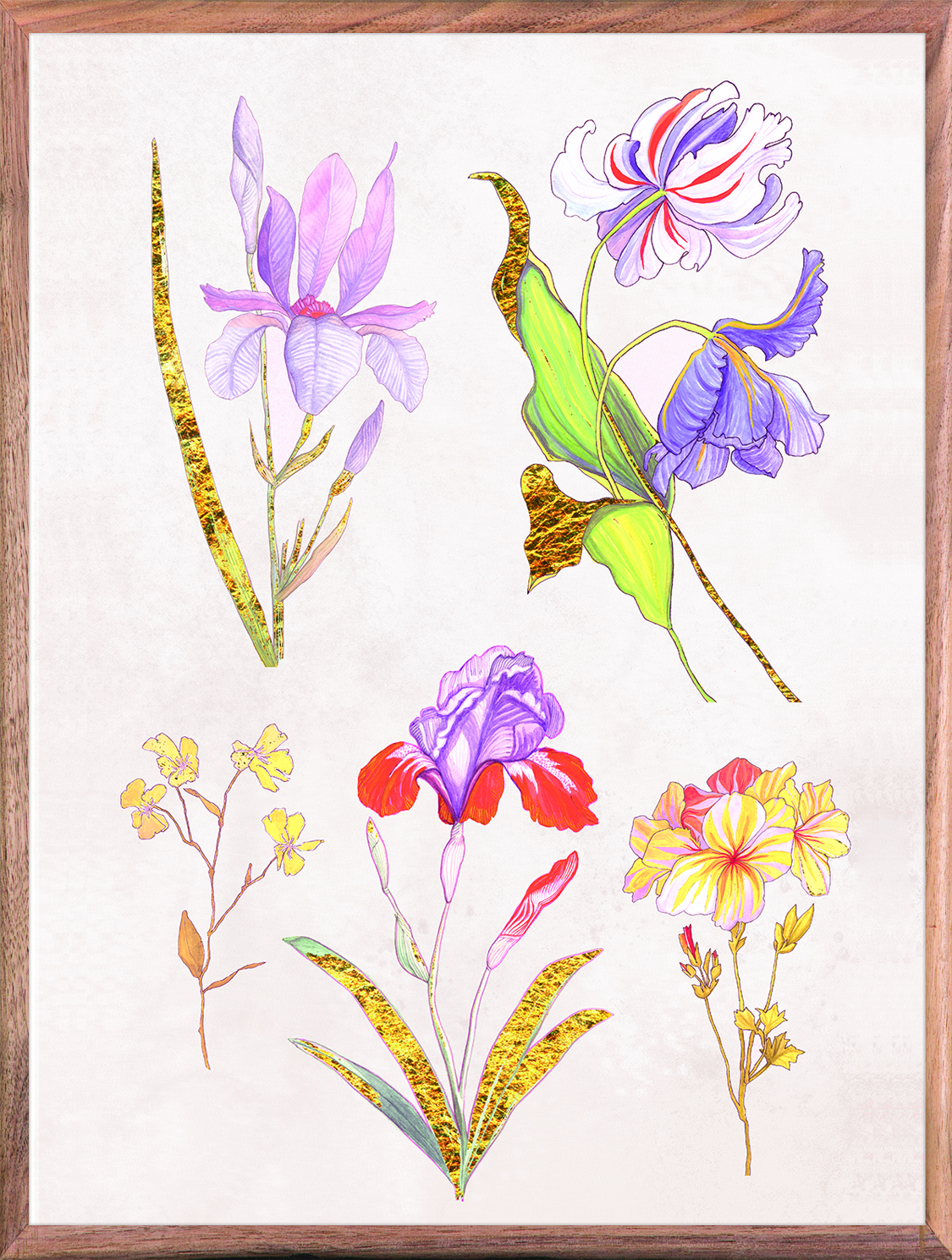 Ars Florae 1 Lavender