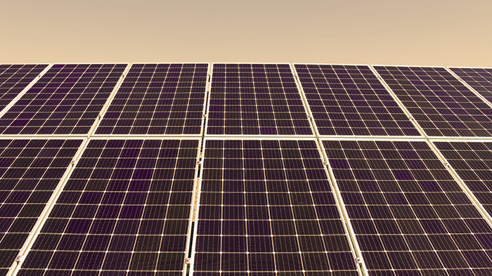 angled view of blue solar panels during the daytime