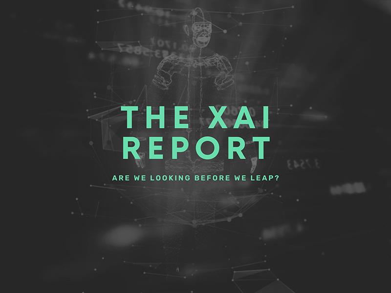 THE XAI REPORT