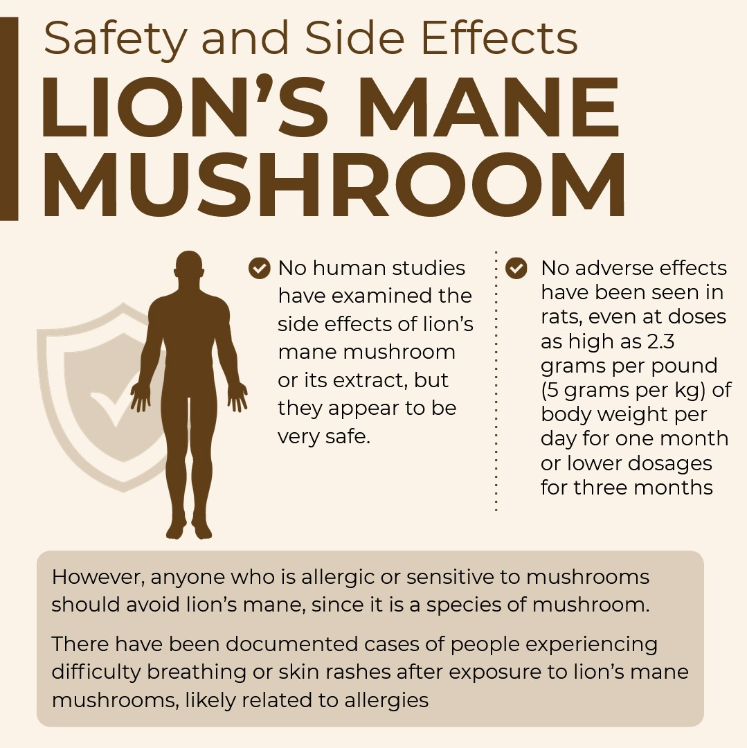 Safety and Side Effects Lion's Mane Mushroom
