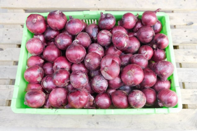 Highest quality onion, well cured, round, no physical deformity. Small (30-40 mm), Medium (40-50mm) or Large (50-60mm)