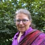 Headshot of Bonnie Sue Stein