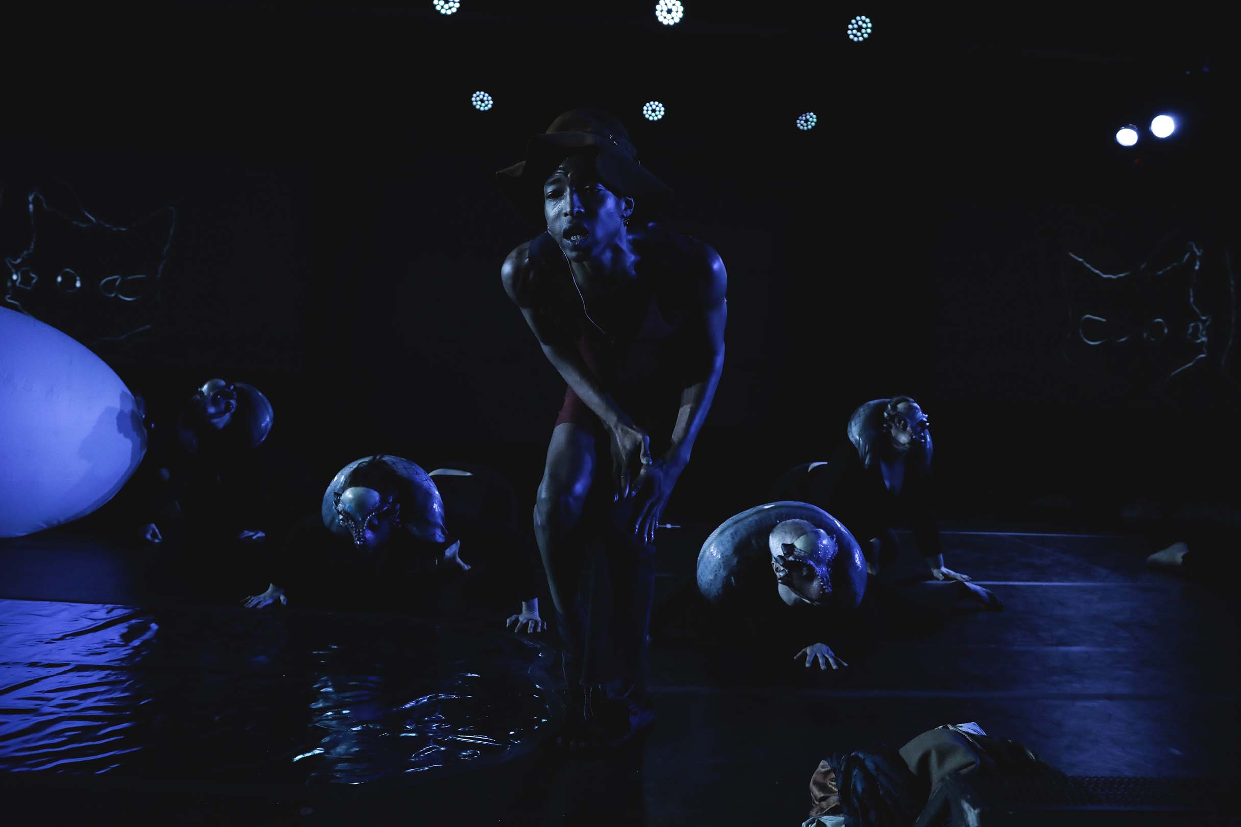 people dancing under blue light