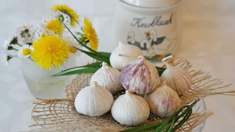 superfoods to fight the cold - garlic