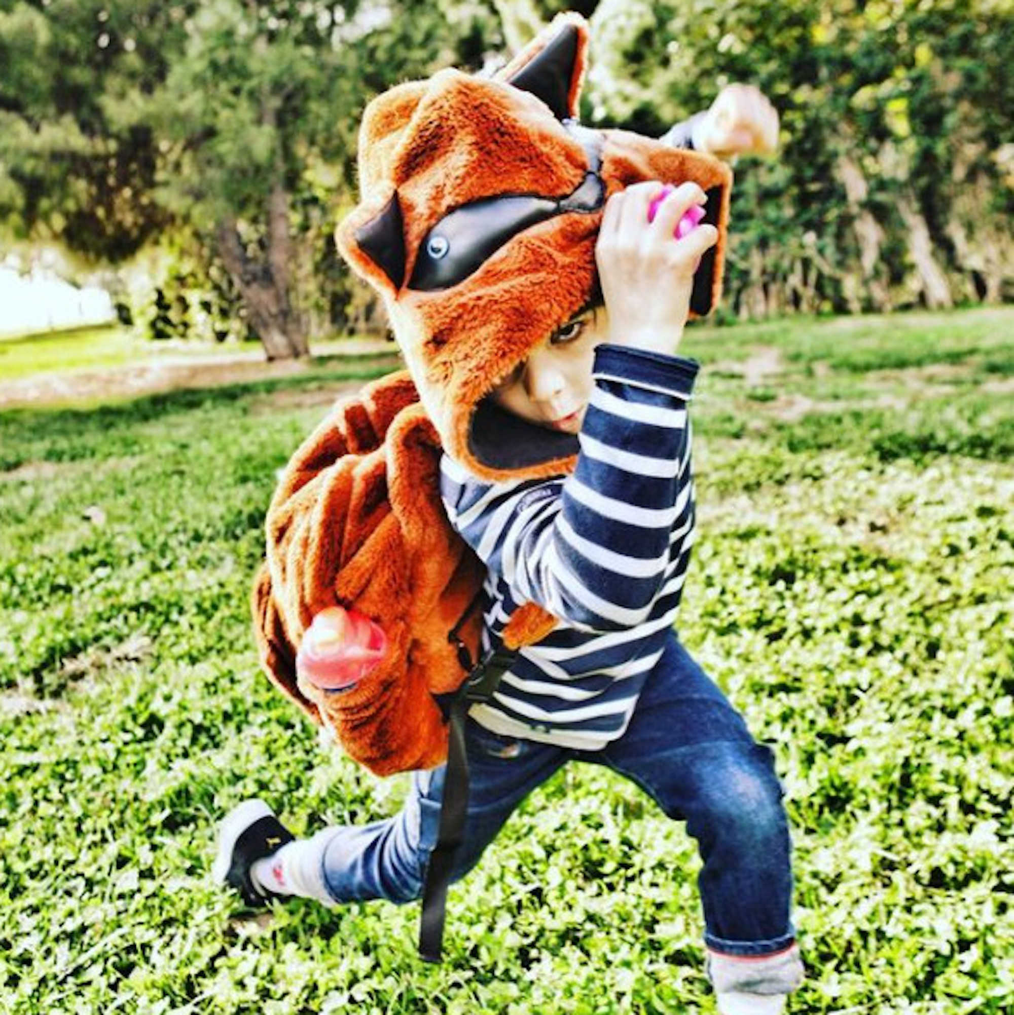 Kids Collection - Fox
