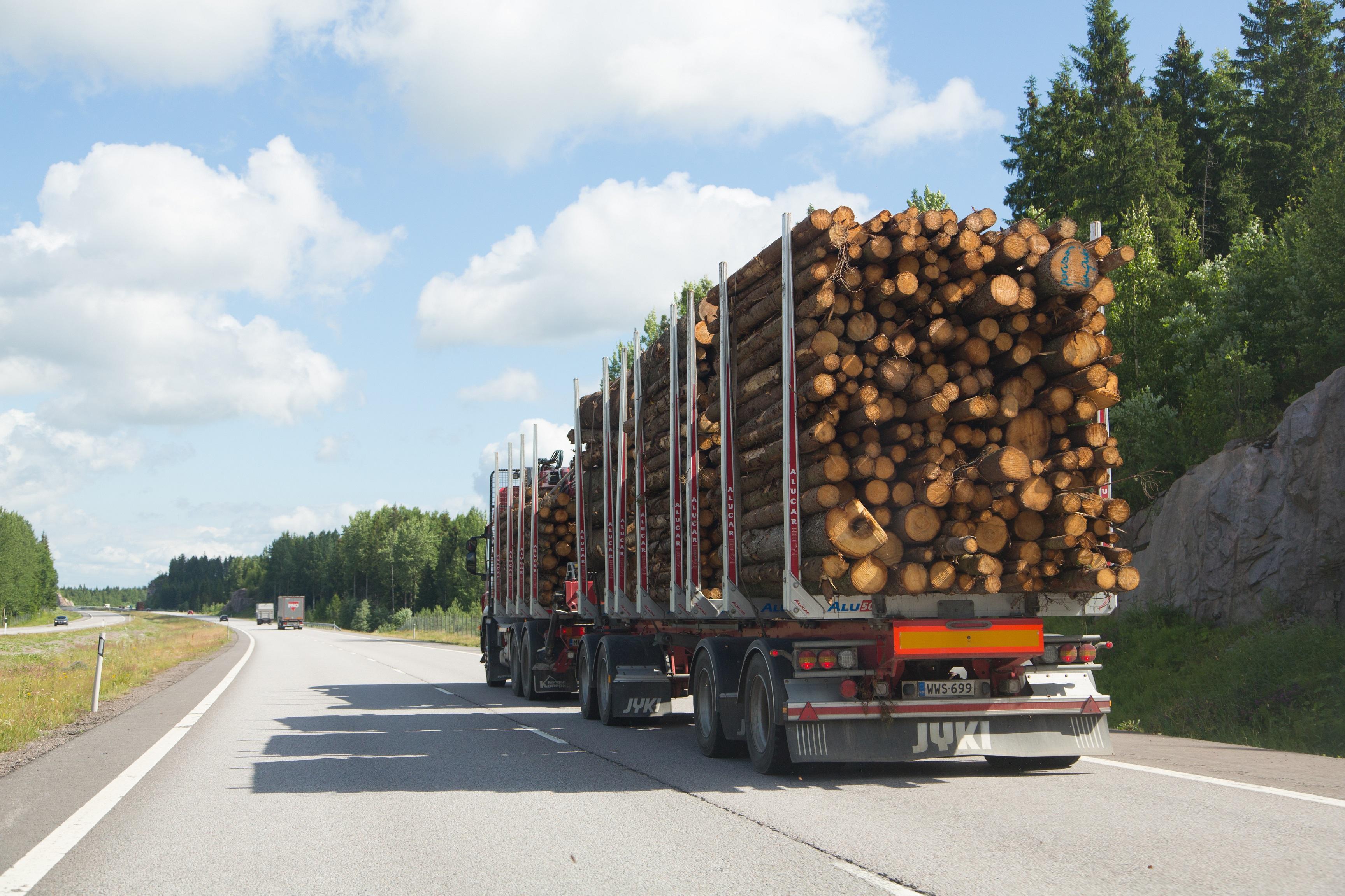 Puun tuonti täydentää kotimaista puunhankintaa