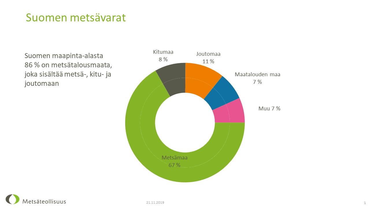 Suomen metsävarat kasvavat