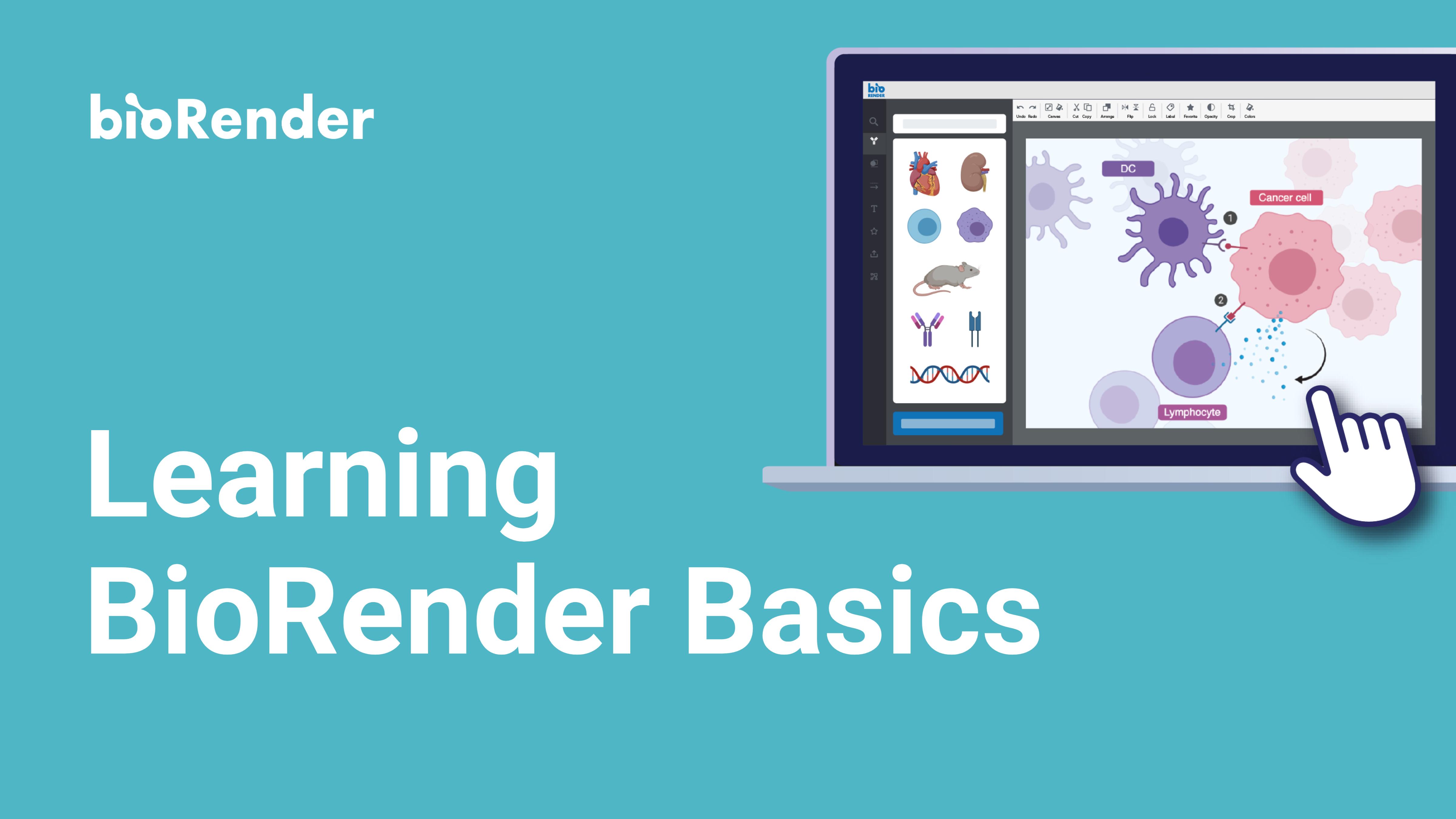 BioRender 101 Webinar (Shiz)