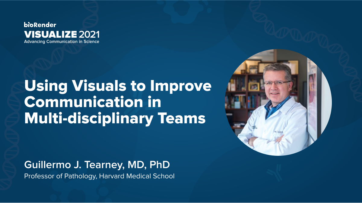 Using Visuals to Improve Communication in Multi-disciplinary Teams