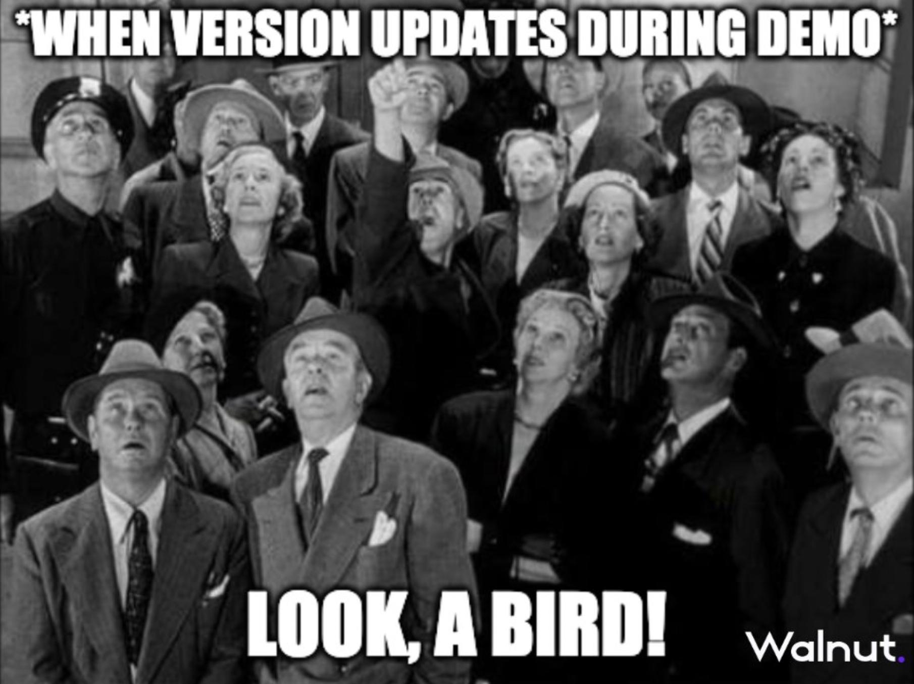 meme sales: version update demo