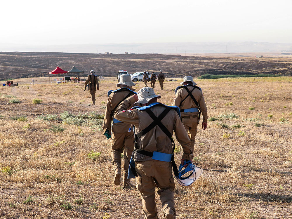 Back view of 3 deminers walking in the field