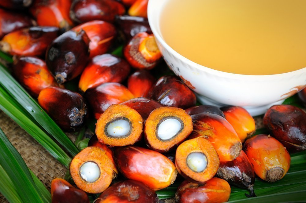 why is palm oil bad